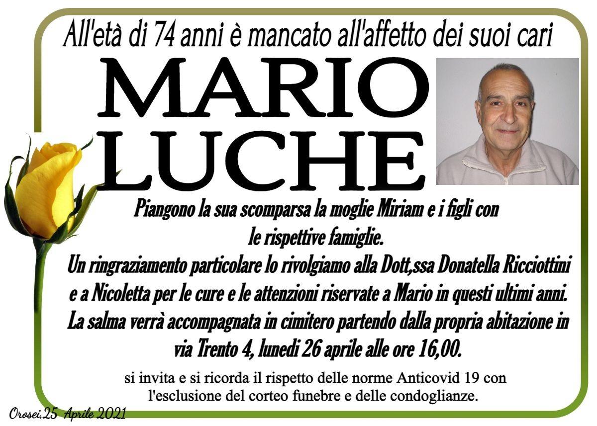MANIFESTO Mario Luche